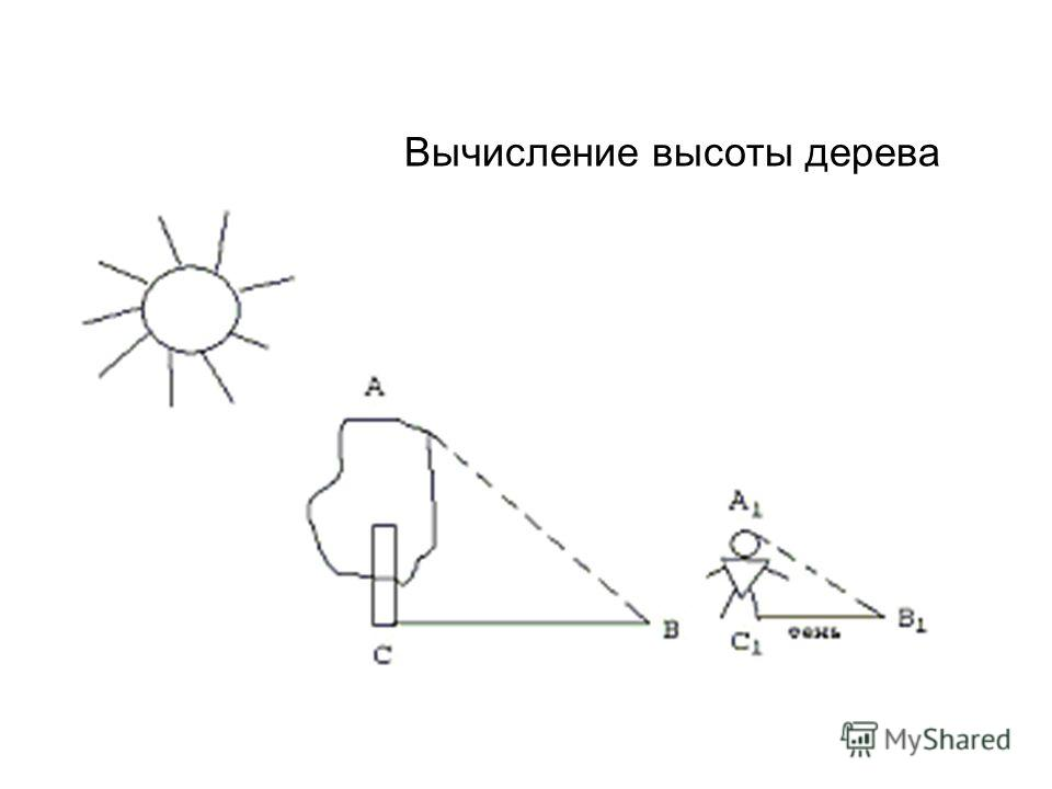 Тень от пирамидыТень от палки Высота шеста - 4 локтя Длина тени шеста - 6 локтей Длина тени пирамиды - 200 локтей 200 6 4 А В С А1А1 В1В1 С1С1 h По легенде Фалес измерил высоту одной из Египетских пирамид, используя метод подобия треугольников. [приб