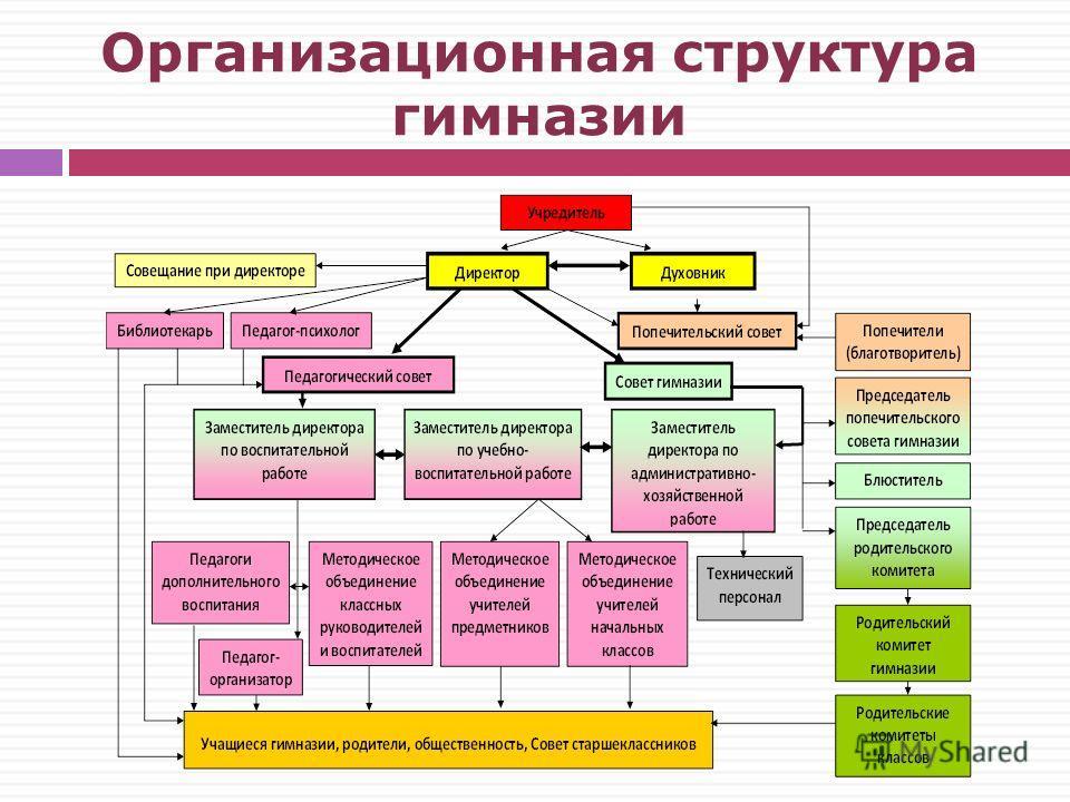 Организационная структура гимназии
