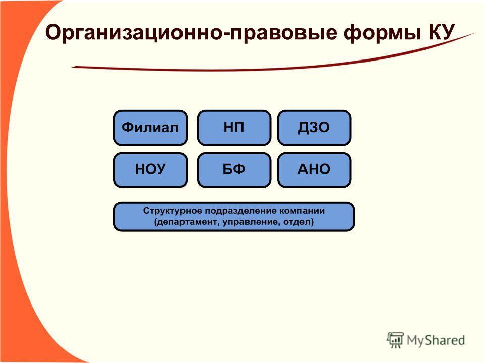 Организационно-правовые формы КУ