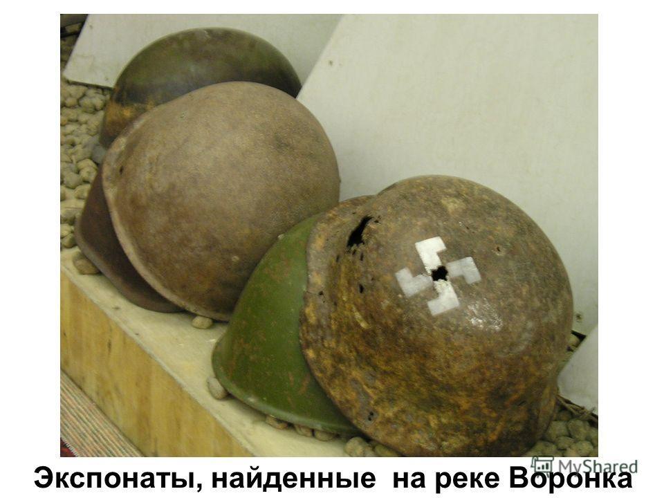 Экспонаты, найденные на реке Воронка