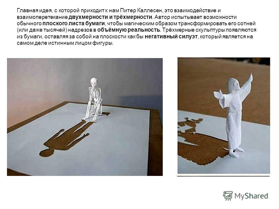Главная идея, с которой приходит к нам Питер Каллесен, это взаимодействие и взаимоперетекание двухмерности и трёхмерности. Автор испытывает возможности обычного плоского листа бумаги, чтобы магическим образом трансформировать его сотней (или даже тыс