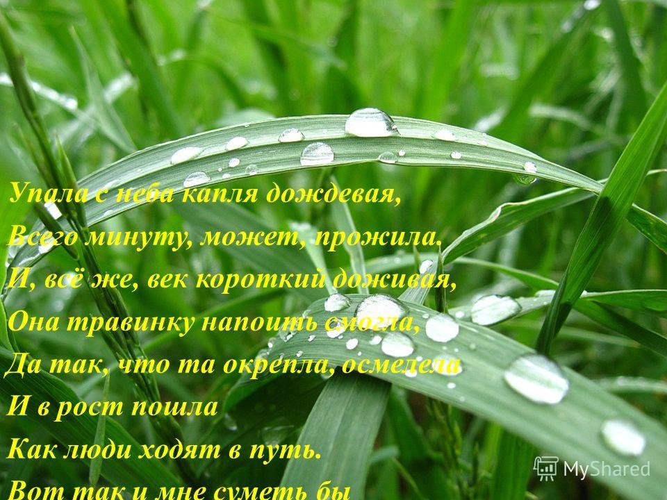 Упала с неба капля дождевая, Всего минуту, может, прожила. И, всё же, век короткий доживая, Она травинку напоить смогла, Да так, что та окрепла, осмелела И в рост пошла Как люди ходят в путь. Вот так и мне суметь бы Жизнью всей и делом Пролиться капл