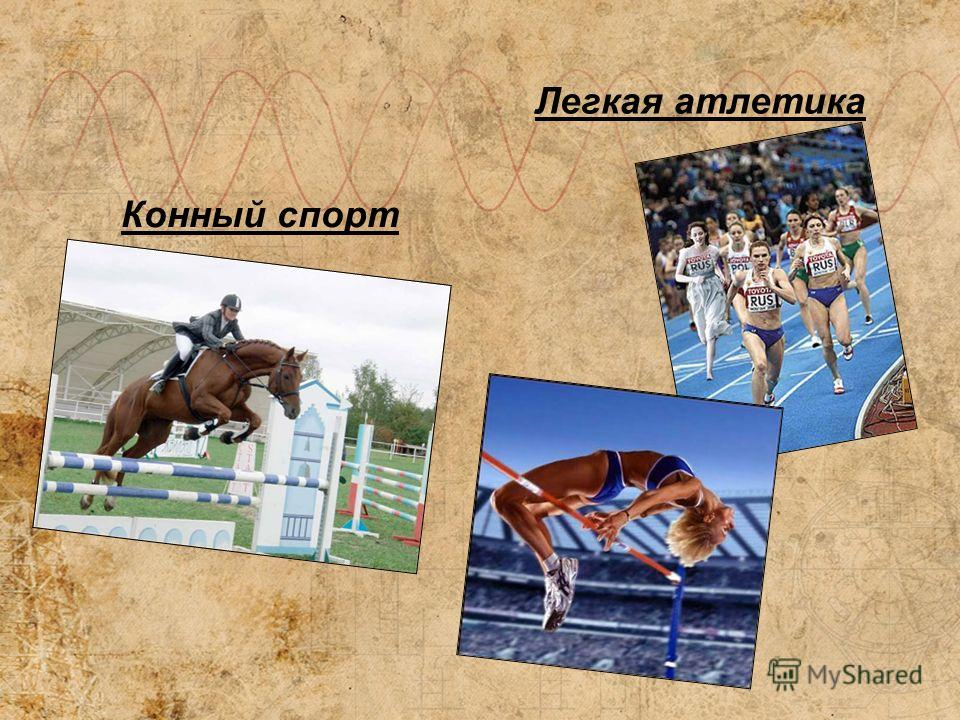 Конный спорт Легкая атлетика