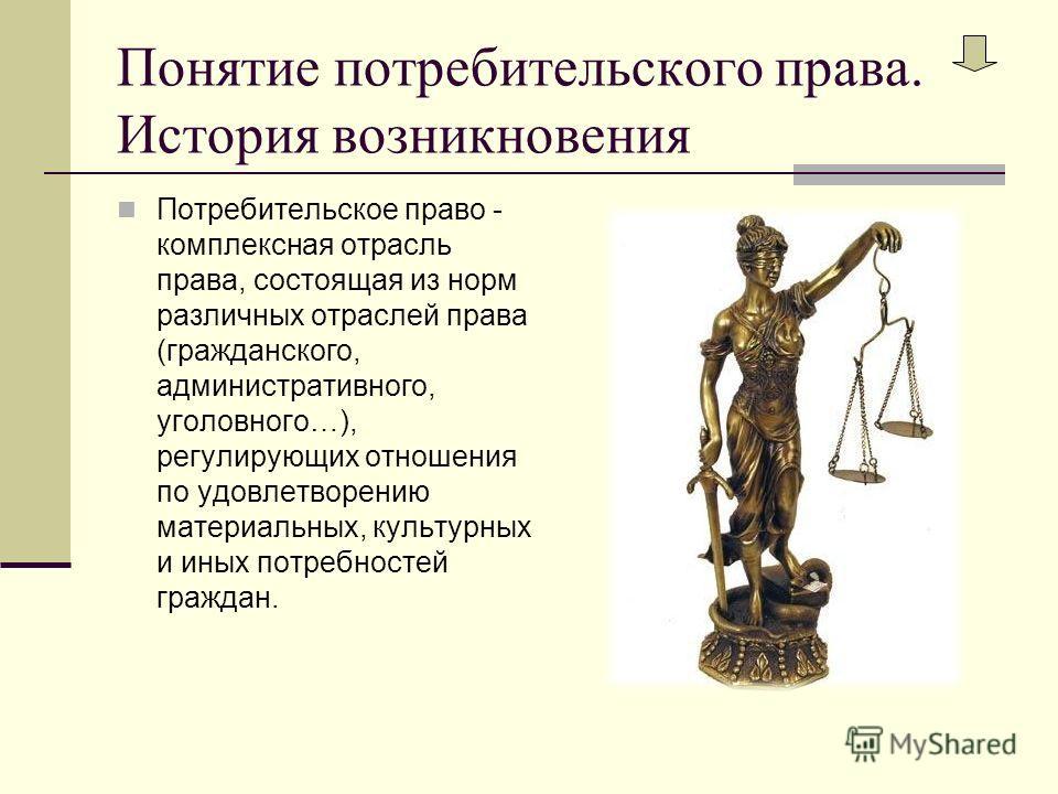 Понятие потребительского права. История возникновения Потребительское право - комплексная отрасль права, состоящая из норм различных отраслей права (гражданского, административного, уголовного…), регулирующих отношения по удовлетворению материальных,