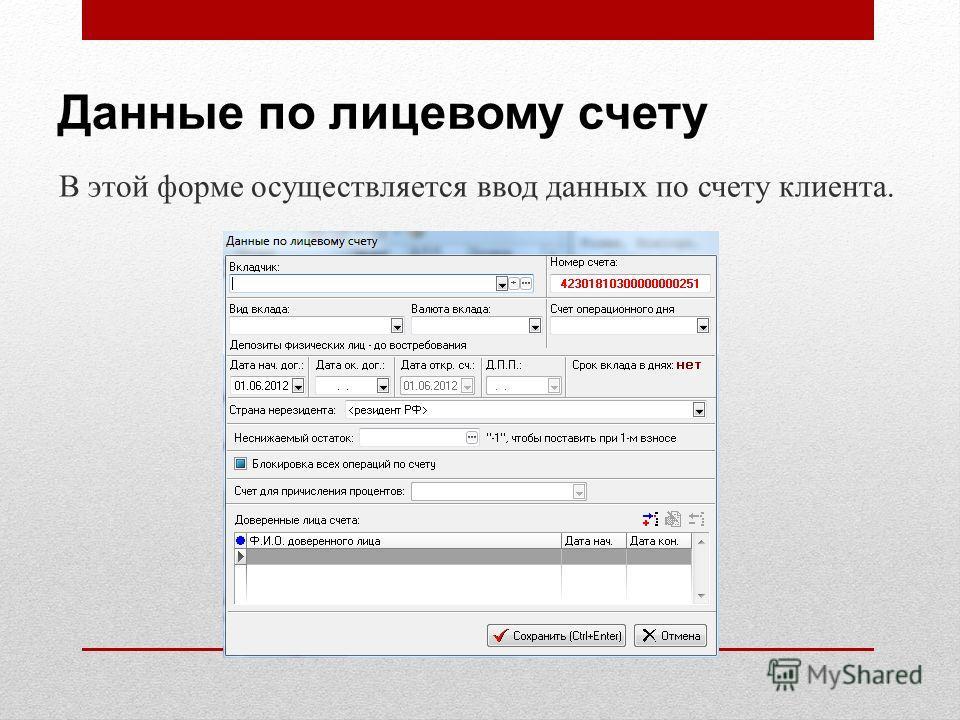 Данные по лицевому счету В этой форме осуществляется ввод данных по счету клиента.