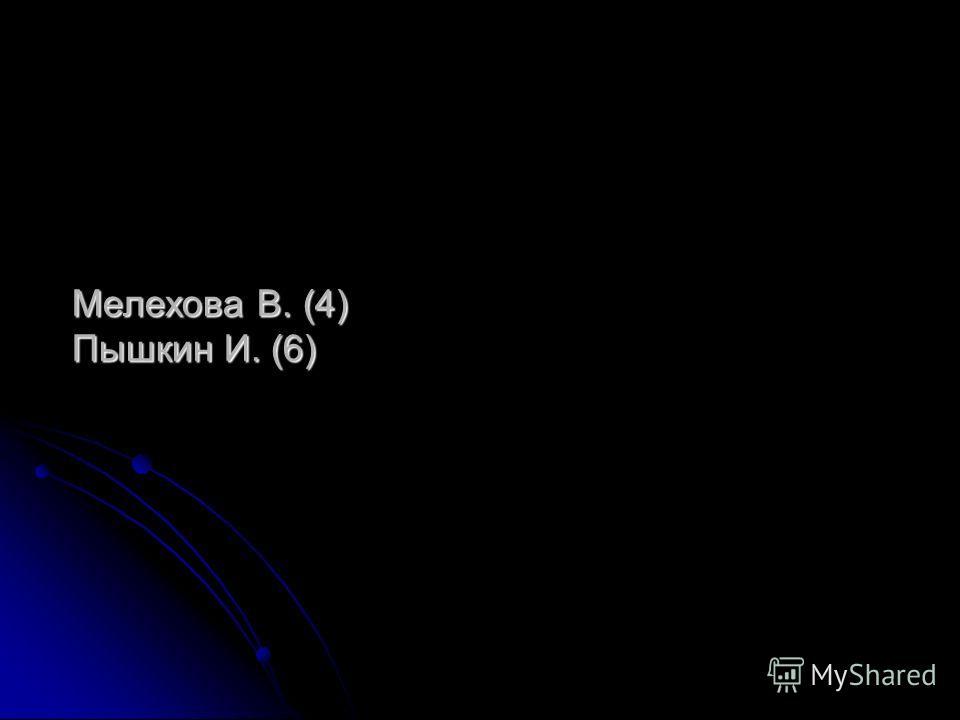 Мелехова В. (4) Пышкин И. (6)