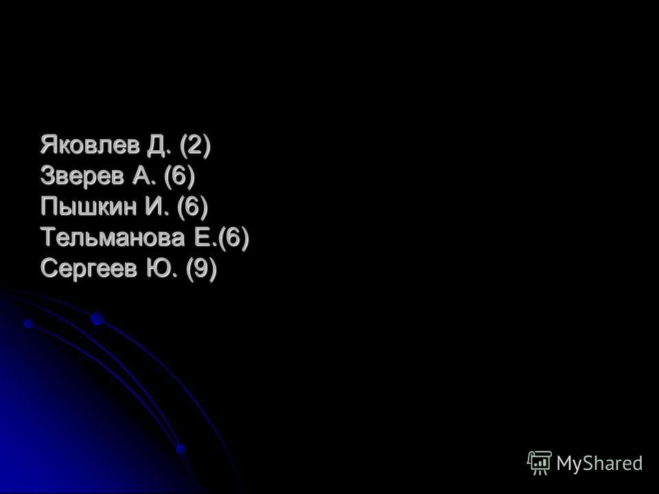 Яковлев Д. (2) Зверев А. (6) Пышкин И. (6) Тельманова Е.(6) Сергеев Ю. (9)