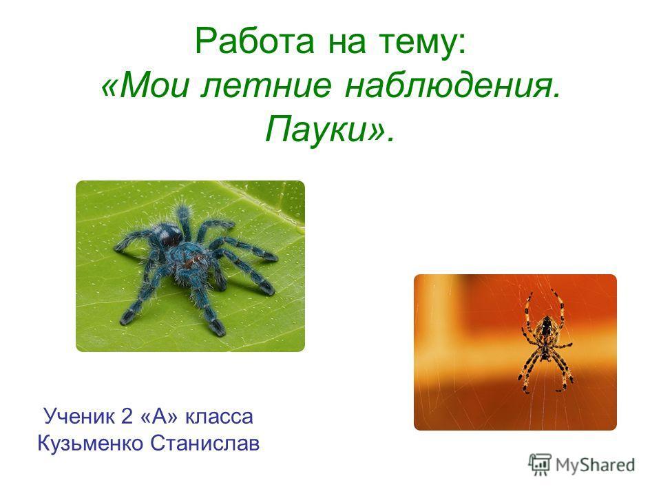 Работа на тему: «Мои летние наблюдения. Пауки». Ученик 2 «А» класса Кузьменко Станислав