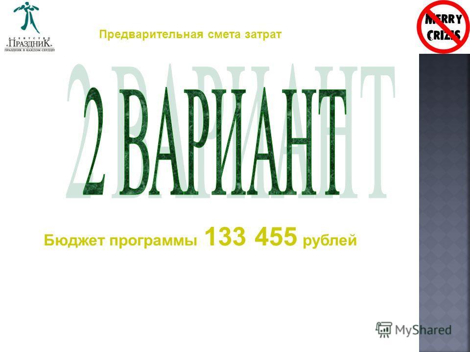 Предварительная смета затрат Бюджет программы 133 455 рублей