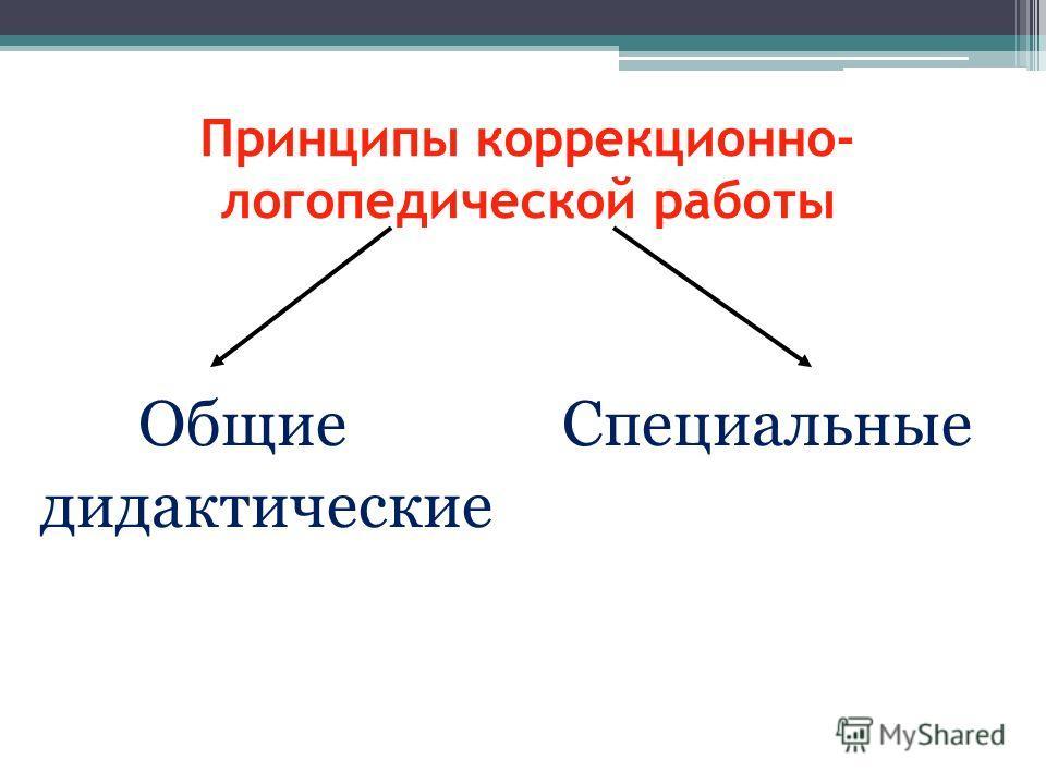 Принципы коррекционно- логопедической работы Общие Специальные дидактические