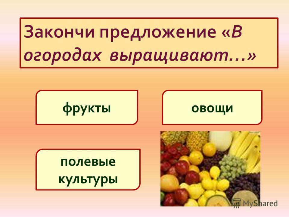 овощифрукты полевые культуры