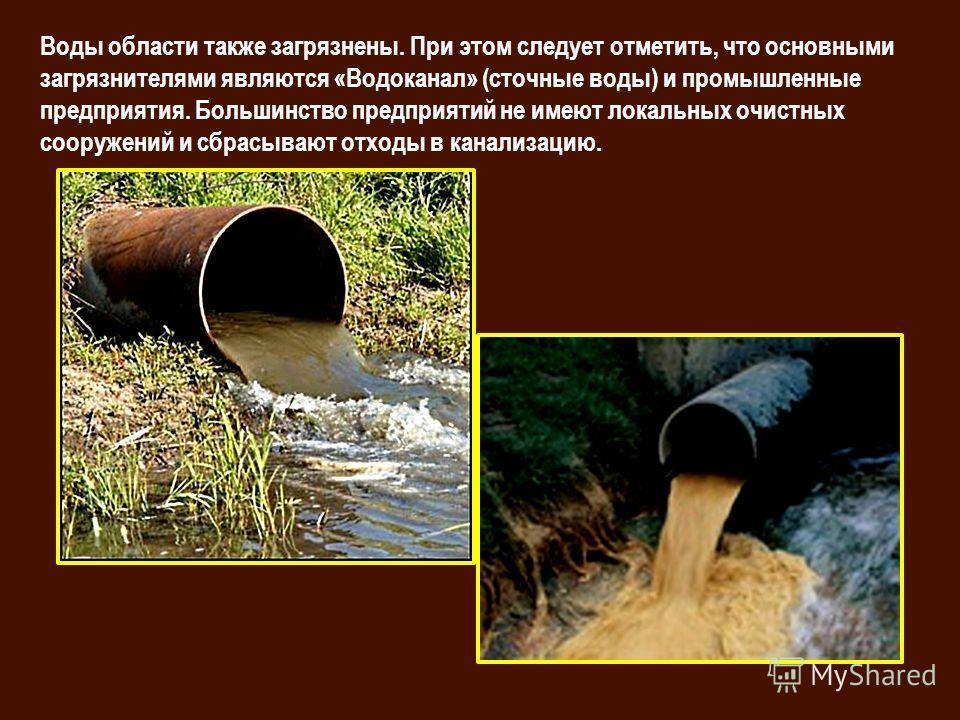Воды области также загрязнены. При этом следует отметить, что основными загрязнителями являются «Водоканал» (сточные воды) и промышленные предприятия. Большинство предприятий не имеют локальных очистных сооружений и сбрасывают отходы в канализацию.