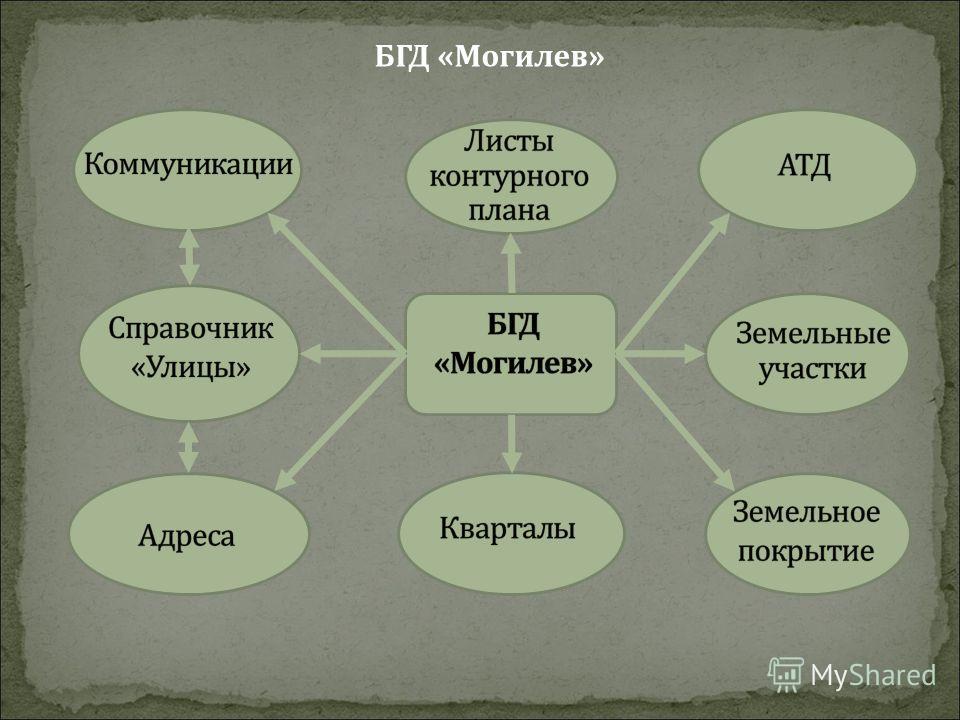 БГД «Могилев»