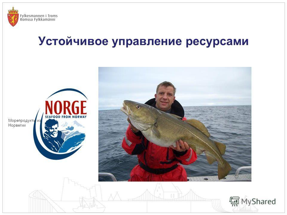 Устойчивое управление ресурсами Морепродукты из Норвегии