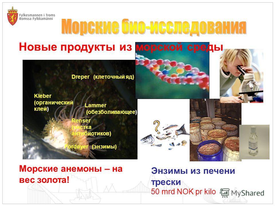Kleber (органический клей) Lammer (обезболивающее) Dreper (клеточный яд) Renser (чистка антибиотиков) Fordøyer (энзимы) Морские анемоны – на вес золота! Энзимы из печени трески 50 mrd NOK pr kilo Новые продукты из морской среды