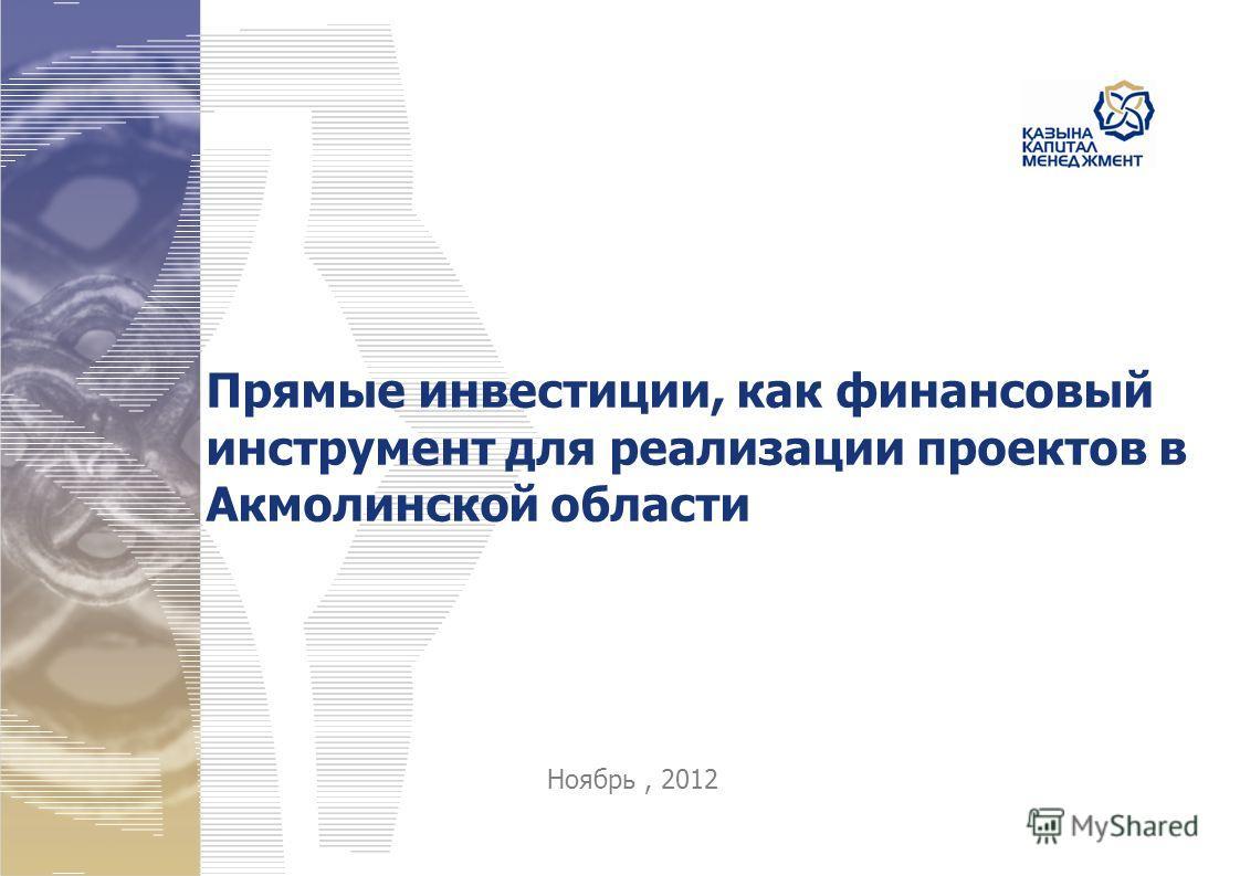 Прямые инвестиции, как финансовый инструмент для реализации проектов в Акмолинской области Ноябрь, 2012