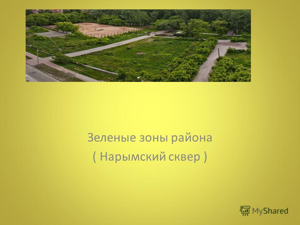 Зеленые зоны района ( Нарымский сквер )
