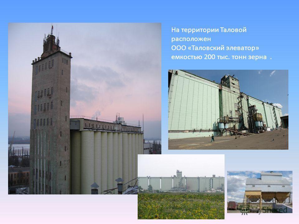 На территории Таловой расположен ООО «Таловский элеватор» емкостью 200 тыс. тонн зерна.