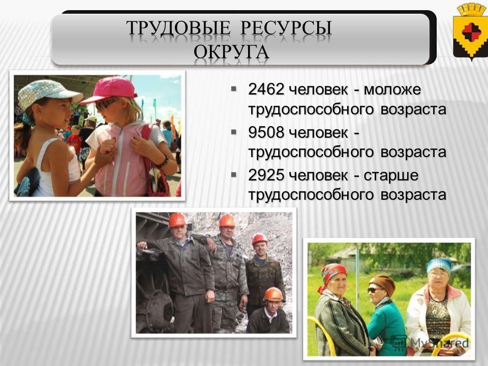 2462 человек - моложе трудоспособного возраста 2462 человек - моложе трудоспособного возраста 9508 человек - трудоспособного возраста 9508 человек - трудоспособного возраста 2925 человек - старше трудоспособного возраста 2925 человек - старше трудосп