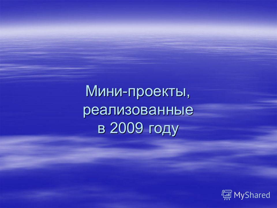 Мини-проекты, реализованные в 2009 году