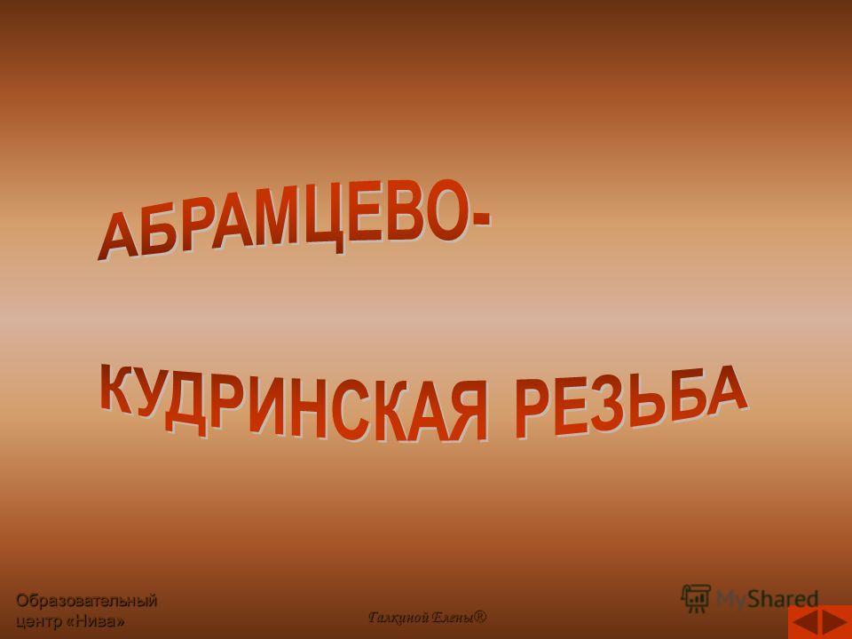 Образовательный центр «Нива» Галкиной Елены®