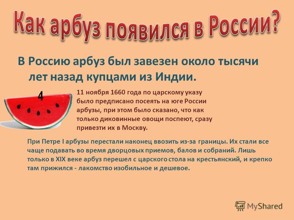 В Россию арбуз был завезен около тысячи лет назад купцами из Индии. 11 ноября 1660 года по царскому указу было предписано посеять на юге России арбузы, при этом было сказано, что как только диковинные овощи поспеют, сразу привезти их в Москву. При Пе