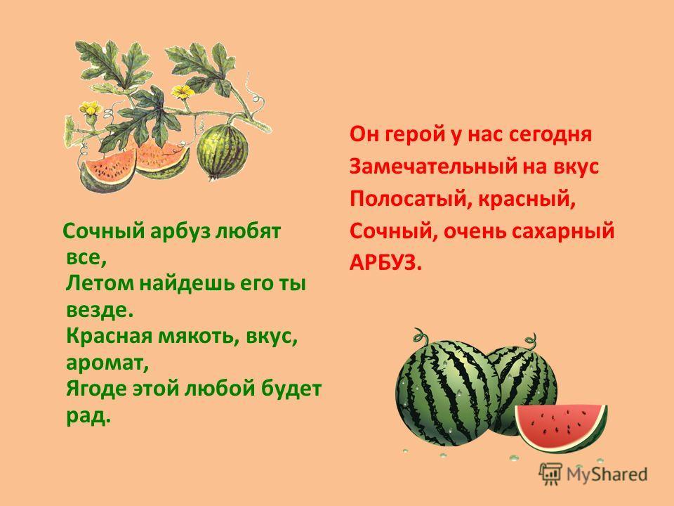 Сочный арбуз любят все, Летом найдешь его ты везде. Красная мякоть, вкус, аромат, Ягоде этой любой будет рад. Он герой у нас сегодня Замечательный на вкус Полосатый, красный, Сочный, очень сахарный АРБУЗ.