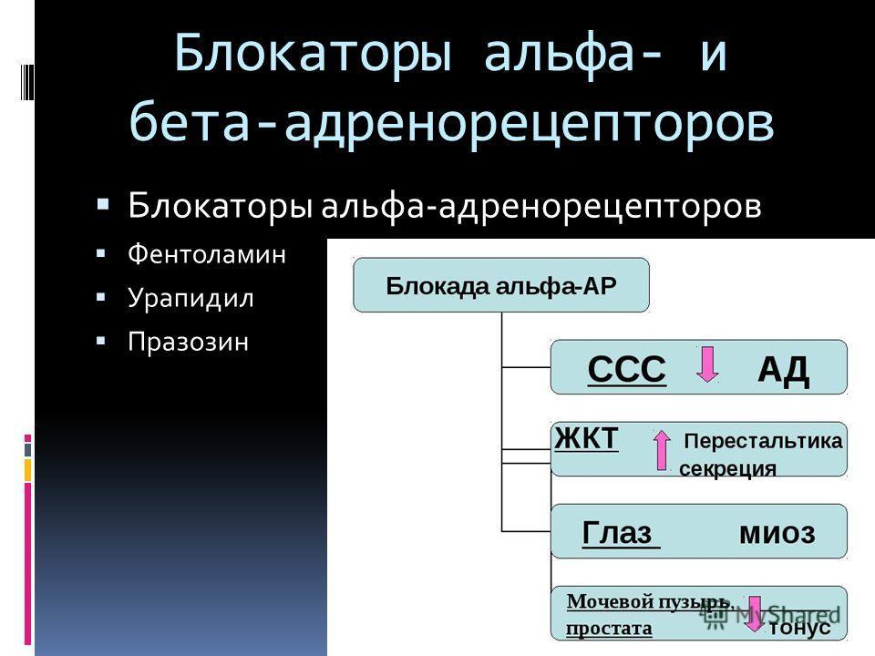 Блокаторы альфа- и бета-адренорецепторов Блокаторы альфа-адренорецепторов Фентоламин Урапидил Празозин