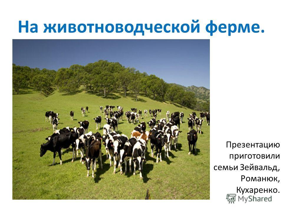 На животноводческой ферме. Презентацию приготовили семьи Зейвальд, Романюк, Кухаренко.