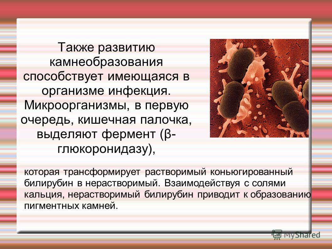 Также развитию камнеобразования способствует имеющаяся в организме инфекция. Микроорганизмы, в первую очередь, кишечная палочка, выделяют фермент (β- глюкоронидазу), которая трансформирует растворимый коньюгированный билирубин в нерастворимый. Взаимо