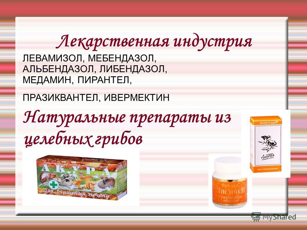 Лекарственная индустрия ЛЕВАМИЗОЛ, МЕБЕНДАЗОЛ, АЛЬБЕНДАЗОЛ, ЛИБЕНДАЗОЛ, МЕДАМИН, ПИРАНТЕЛ, ПРАЗИКВАНТЕЛ, ИВЕРМЕКТИН Натуральные препараты из целебных грибов ЛИСИЧКА НАСТОЯЩАЯ