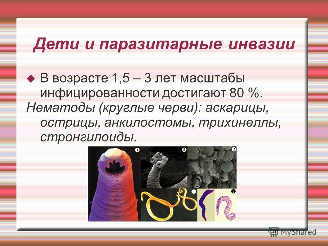 Дети и паразитарные инвазии В возрасте 1,5 – 3 лет масштабы инфицированности достигают 80 %. Нематоды (круглые черви): аскарицы, острицы, анкилостомы, трихинеллы, стронгилоиды.