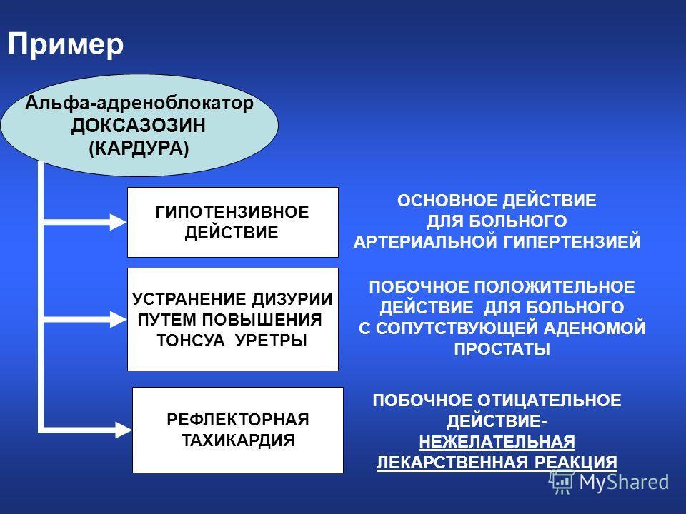 Пример Альфа-адреноблокатор ДОКСАЗОЗИН (КАРДУРА) ГИПОТЕНЗИВНОЕ ДЕЙСТВИЕ УСТРАНЕНИЕ ДИЗУРИИ ПУТЕМ ПОВЫШЕНИЯ ТОНСУА УРЕТРЫ РЕФЛЕКТОРНАЯ ТАХИКАРДИЯ ОСНОВНОЕ ДЕЙСТВИЕ ДЛЯ БОЛЬНОГО АРТЕРИАЛЬНОЙ ГИПЕРТЕНЗИЕЙ ПОБОЧНОЕ ПОЛОЖИТЕЛЬНОЕ ДЕЙСТВИЕ ДЛЯ БОЛЬНОГО С С