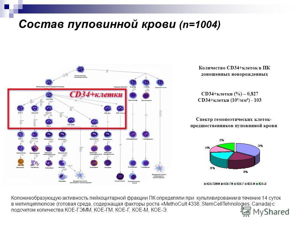 Колониеобразующую активность лейкоцитарной фракции ПК определяли при культивировании в течение 14 суток в метилцеллюлозе (готовая среда, содержащая факторы роста «MethoCult 4338, StemCellTehnologies, Canada) с подсчетом количества КОЕ-ГЭММ, КОЕ-ГМ, К