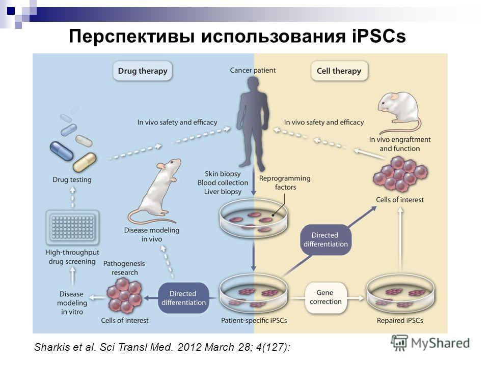 Sharkis et al. Sci Transl Med. 2012 March 28; 4(127): Перспективы использования iPSCs