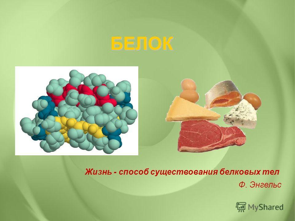 БЕЛОК Жизнь - способ существования белковых тел Ф. Энгельс