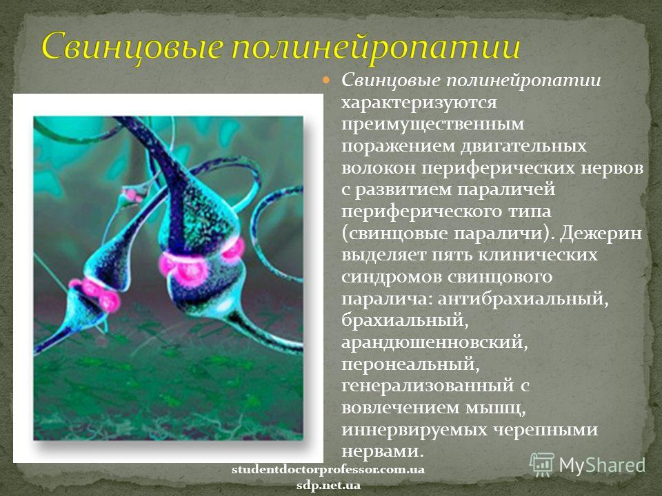 Свинцовые полинейропатии характеризуются преимущественным поражением двигательных волокон периферических нервов с развитием параличей периферического типа (свинцовые параличи). Дежерин выделяет пять клинических синдромов свинцового паралича: антибрах
