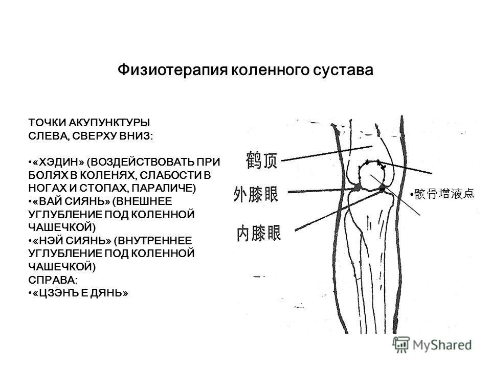 Физиотерапия заболеваний, связанных с иммунной системой Воздействие методом массажа «гуаша» на меридиан легких, меридиан «жэньмай» (один из восьми внешних меридианов), а также на взаимосвязанные части тела.