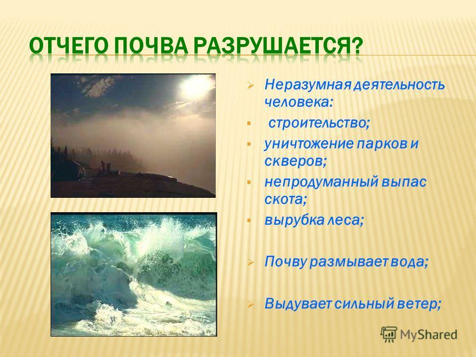 Неразумная деятельность человека: строительство; уничтожение парков и скверов; непродуманный выпас скота; вырубка леса; Почву размывает вода; Выдувает сильный ветер;