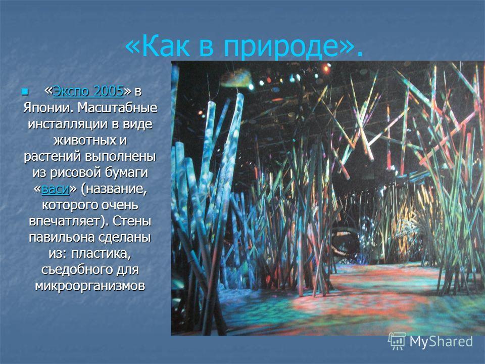 « Экспо 2005» в Японии. Масштабные инсталляции в виде животных и растений выполнены из рисовой бумаги «васи» (название, которого очень впечатляет). Стены павильона сделаны из: пластика, съедобного для микроорганизмов « Экспо 2005» в Японии. Масштабны