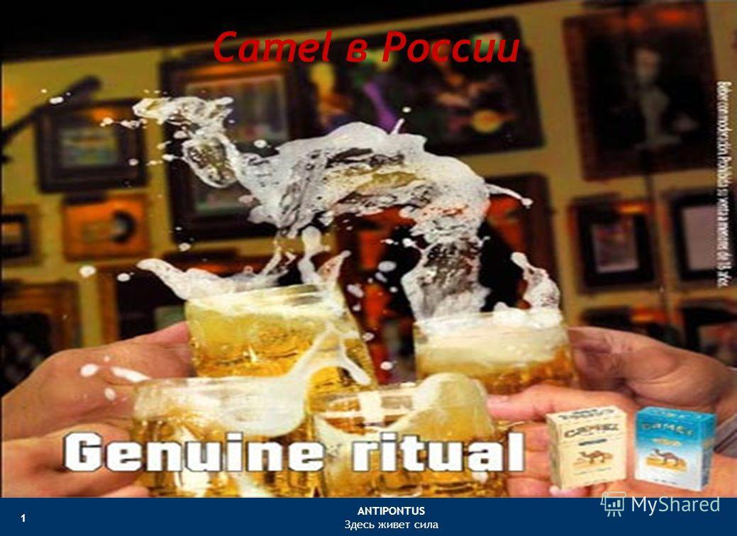 ANTIPONTUS Здесь живет сила 1 Camel в России