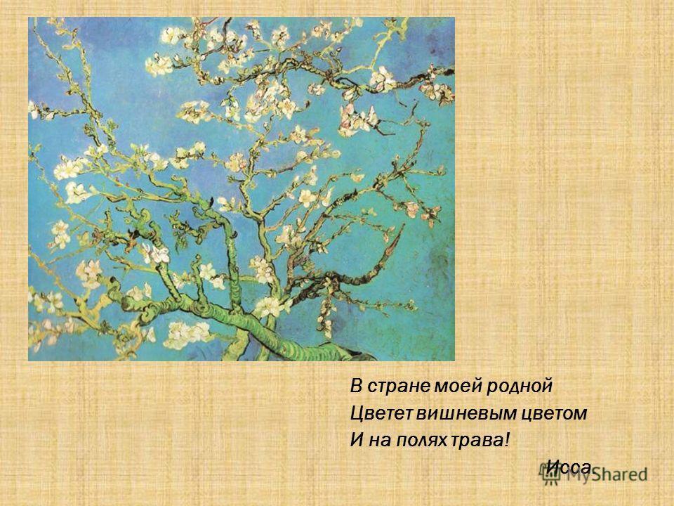 В стране моей родной Цветет вишневым цветом И на полях трава! Исса.