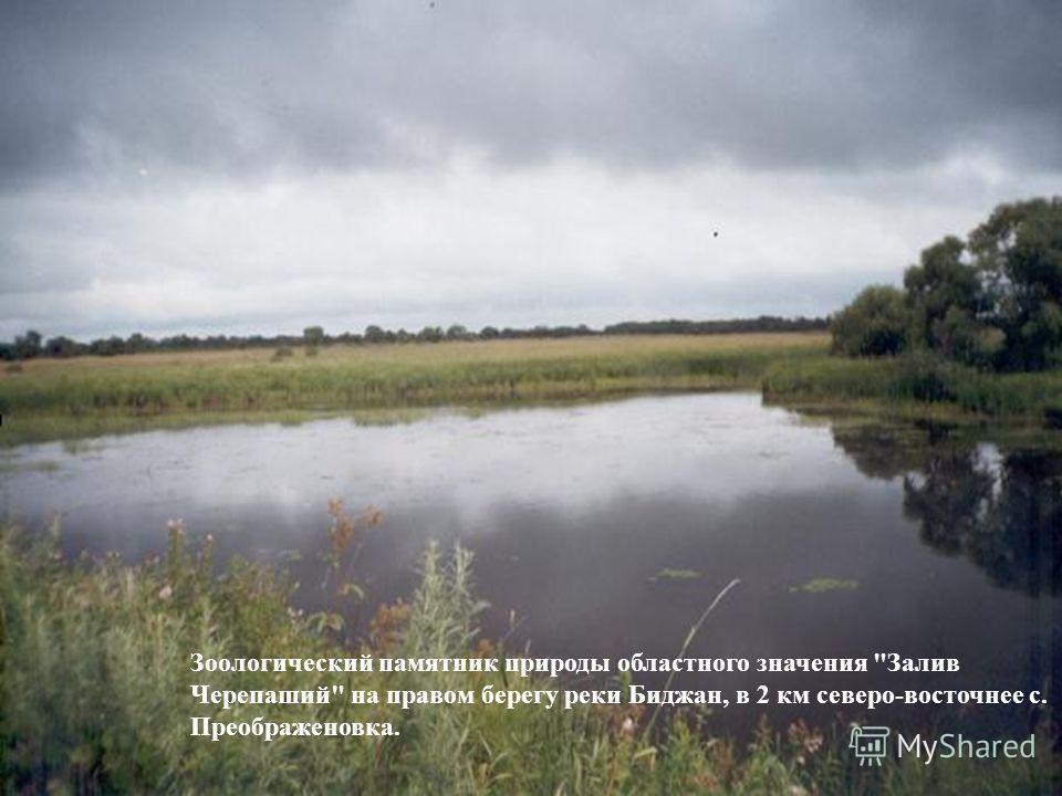 Зоологический памятник природы областного значения Залив Черепаший на правом берегу реки Биджан, в 2 км северо-восточнее с. Преображеновка.