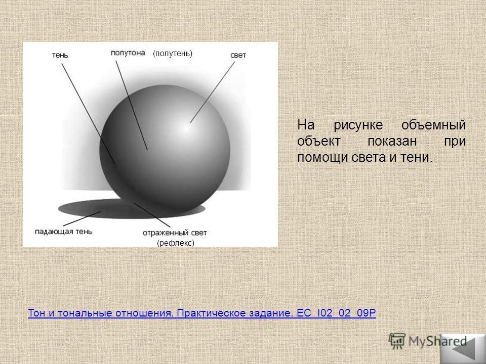 На рисунке объемный объект показан при помощи света и тени. (рефлекс) (полутень) Тон и тональные отношения. Практическое задание. EC_I02_02_09P