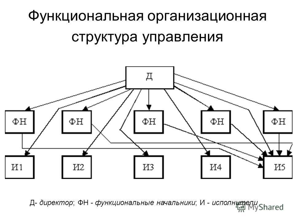 Функциональная организационная структура управления Д- директор; ФН - функциональные начальники; И - исполнители