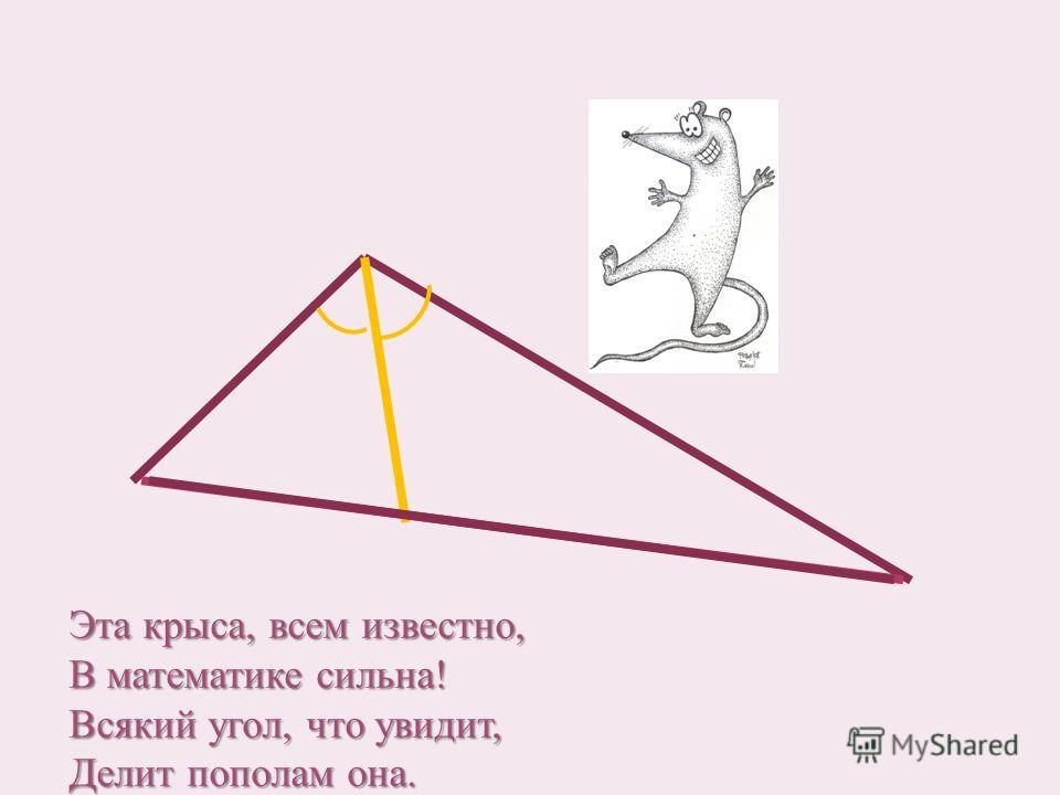 Эта крыса, всем известно, В математике сильна! Всякий угол, что увидит, Делит пополам она.