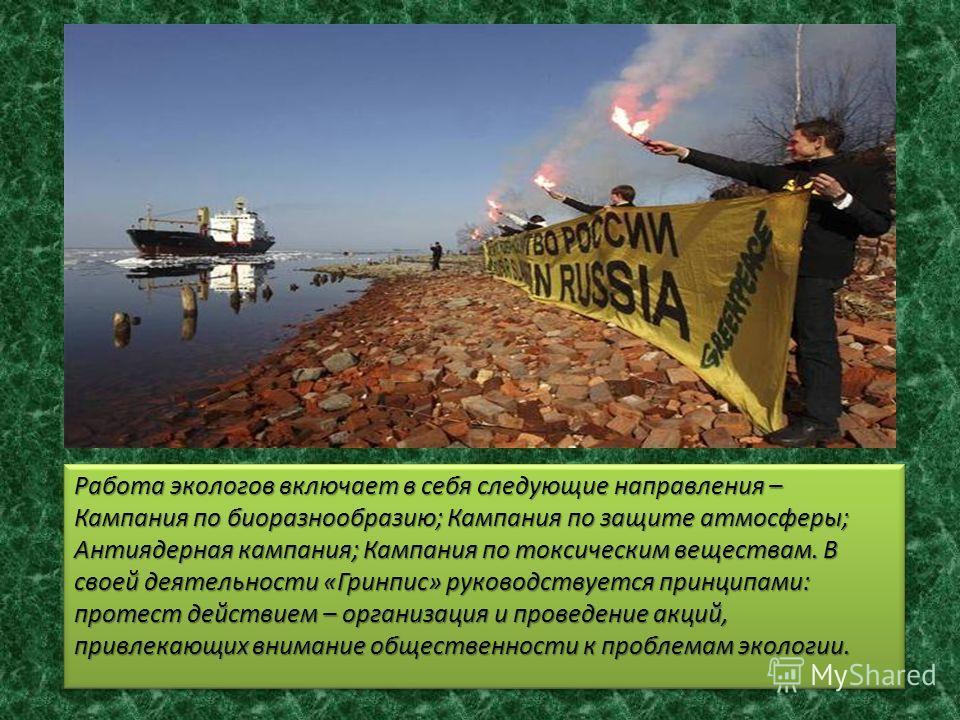 Работа экологов включает в себя следующие направления – Кампания по биоразнообразию; Кампания по защите атмосферы; Антиядерная кампания; Кампания по токсическим веществам. В своей деятельности «Гринпис» руководствуется принципами: протест действием –