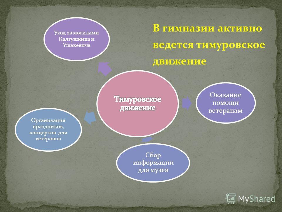 В гимназии активно ведется тимуровское движение Уход за могилами Калгушкина и Ушакевича Оказание помощи ветеранам Сбор информации для музея Организация праздников, концертов для ветеранов