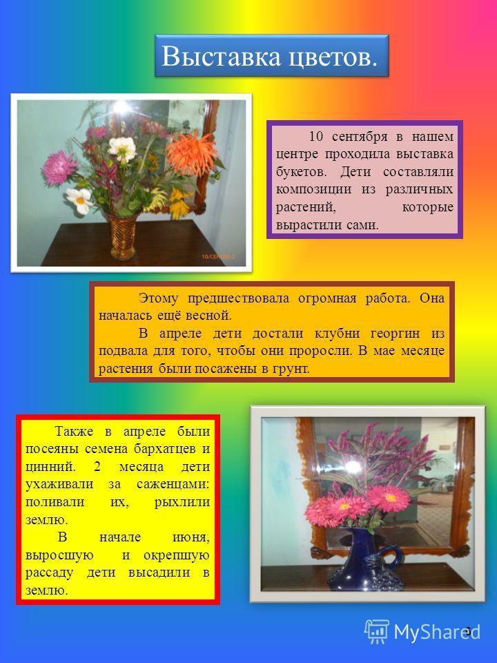 6 Выставка цветов. 10 сентября в нашем центре проходила выставка букетов. Дети составляли композиции из различных растений, которые вырастили сами. Этому предшествовала огромная работа. Она началась ещё весной. В апреле дети достали клубни георгин из