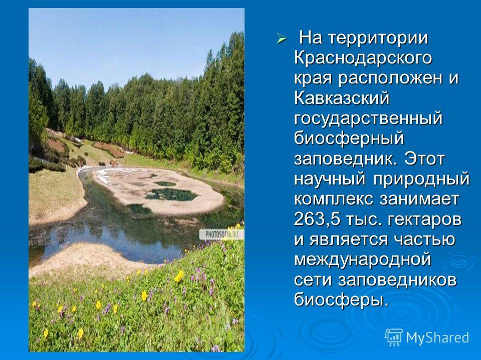 На территории Краснодарского края расположен и Кавказский государственный биосферный заповедник. Этот научный природный комплекс занимает 263,5 тыс. гектаров и является частью международной сети заповедников биосферы. На территории Краснодарского кра